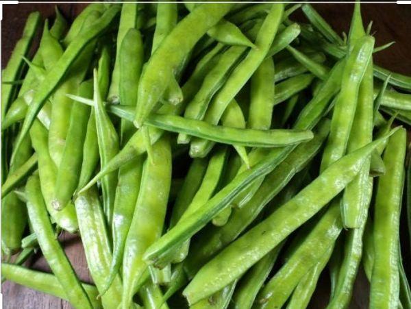 Beans (gwar)