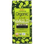 Radico COLOUR ME 100 Organic USDA Certified Hair Colour (Soft Black)